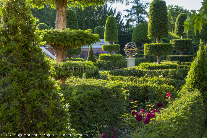 Yew topiary parterre, roses, view to armillary sphere