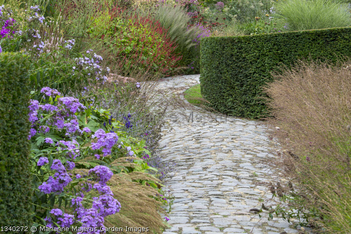 Granite sett path through border, clipped yew hedges, phlox, Persicaria amplexicaulis, Molinia caerulea 'Poul Petersen'