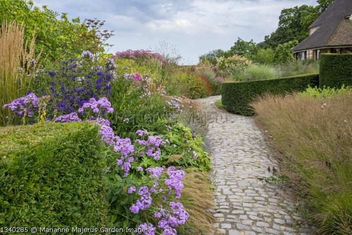 Granite sett path through border, clipped yew hedges, phlox, Aconitum napellus, Molinia caerulea 'Poul Petersen'