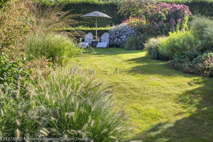 Grass path, recliner chairs under umbrella on lawn, Pennisetum alopecuroides 'Gelbstiel', Eupatorium maculatum (Atropurpureum Group) 'Riesenschirm', Molinia caerulea subsp. arundinacea 'Transparent'
