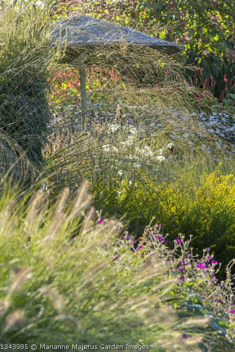 Molinia caerulea subsp. arundinacea 'Transparent', Pennisetum alopecuroides 'Gelbstiel', Solidago caesia, Persicaria amplexicaulis 'Firedance', Geranium 'Anne Thomson'
