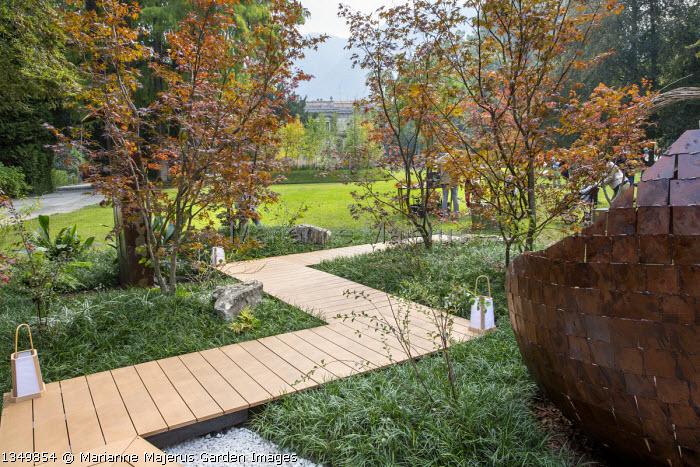 Timber boardwalk path through carpet of Ophiopogon japonicus 'Gyoku-ryu', Acer palmatum