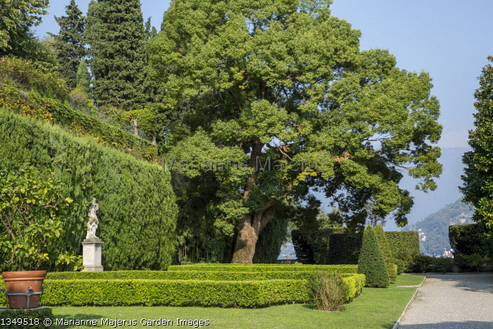 Mediterranean terrace, stone statue on plinth, clipped hedges