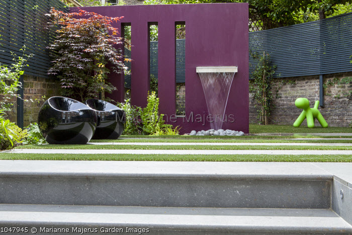 Steps to water feature on purple painted wall, black chairs, Acer palmatum, green dog