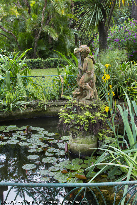 Terracotta statue fountain in water lily pond, Iris pseudacorus