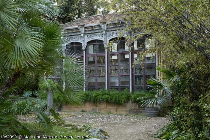 Orangery in shady mediterranean garden, bamboo