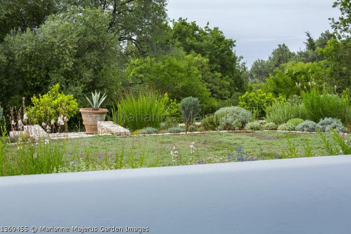 Infinity pool, alpine lawn, Gaura lindheimeri