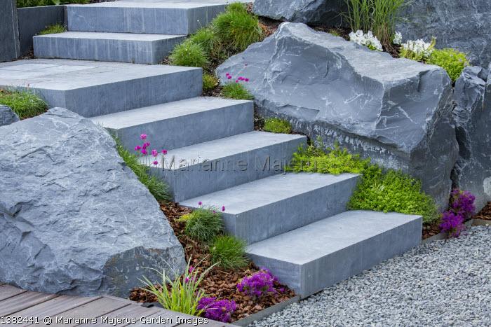 Stone steps through rockery, large rocks