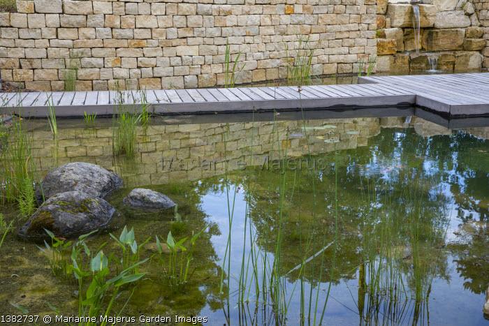 Natural swimming pond, decking