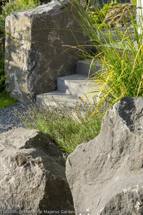 Large basalt rocks around steps, Lavandula angustifolia 'Dwarf Blue´, Molinia caerulea subsp. arundinacea 'Skyracer'