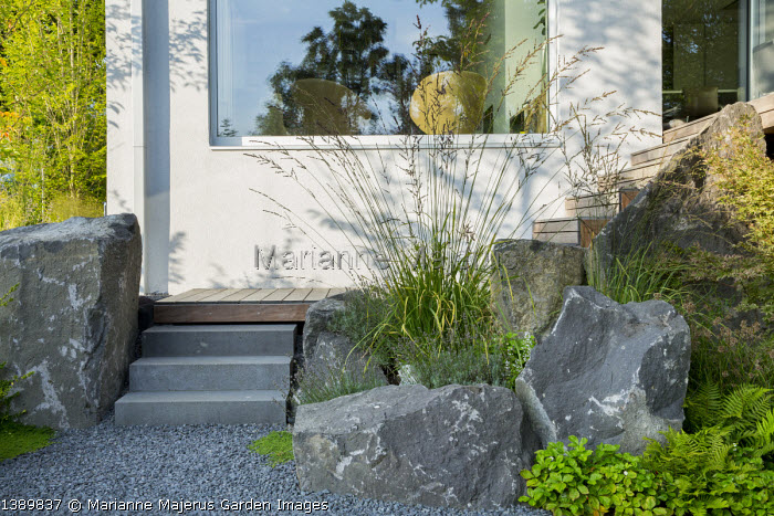 Large basalt rocks, steps to decking, Molinia caerulea subsp. arundinacea 'Skyracer', Lavandula angustifolia 'Dwarf Blue´