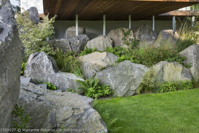 Contemporary basalt rock garden, Luzula nivea, Fragaria vesca 'Alexandria', acer