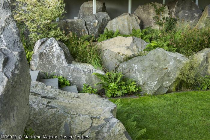 Contemporary basalt rock garden, lawn, Luzula nivea, Fragaria vesca 'Alexandria'