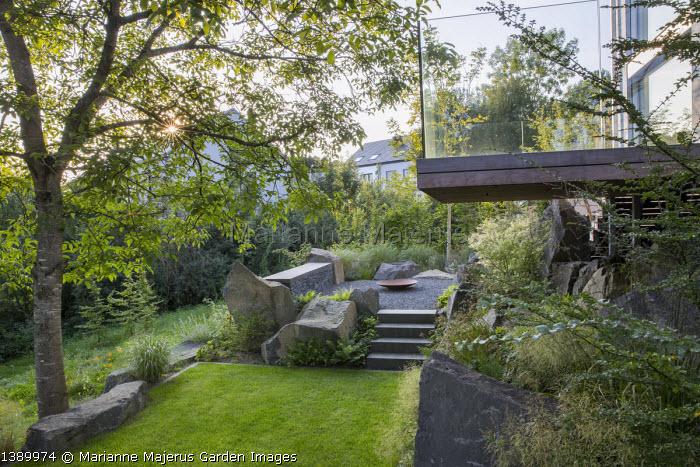Contemporary basalt rock garden, lawn, steps to raised terrace, Juglans regia