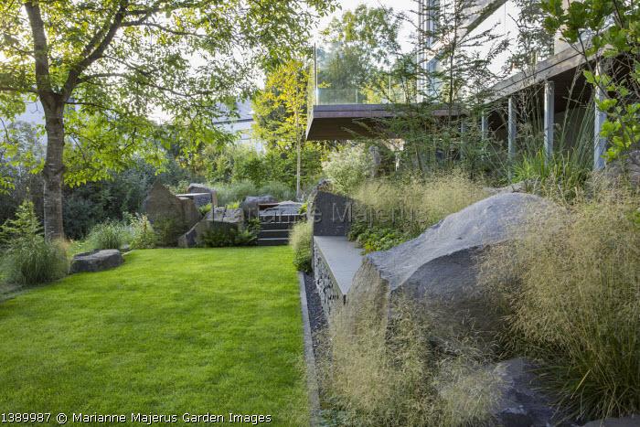 Contemporary basalt rock garden, lawn, Deschampsia cespitosa 'Goldtau', Juglans regia