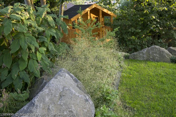Wooden playhouse, large basalt rocks, Deschampsia cespitosa, Hydrangea aspera