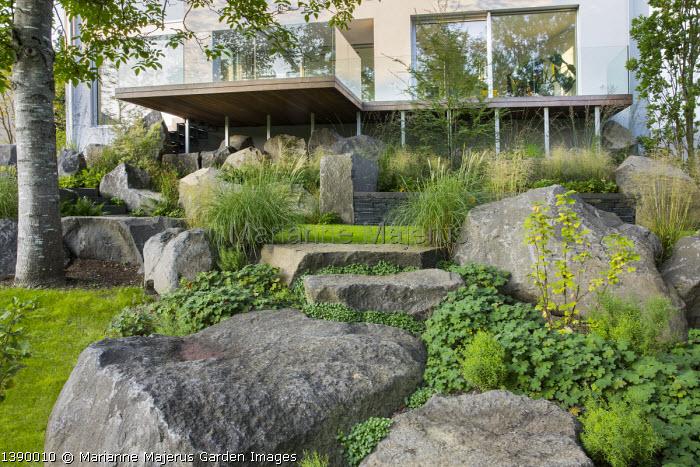 Contemporary basalt rock garden, Geranium renardii, Campanula portenschlagiana 'Resholt' in cracks, Miscanthus sinensis 'Adagio', Ribes nigrum