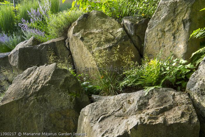 Contemporary rockery, large basalt rocks