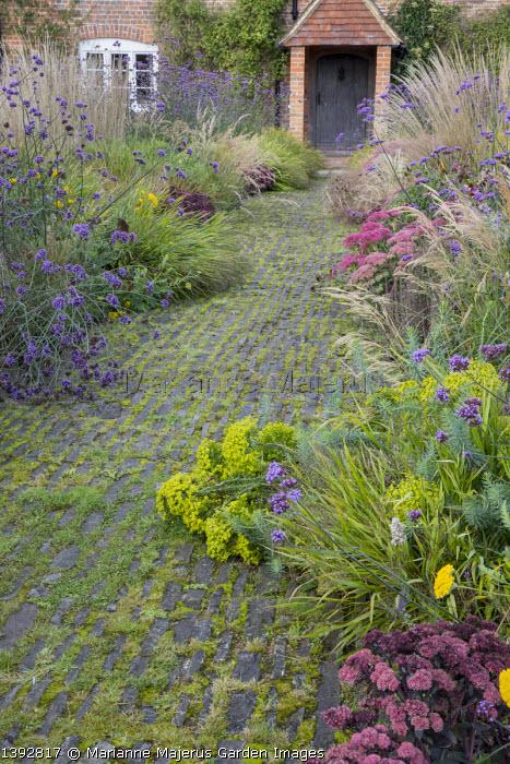 Stone path leading to house, Verbena bonariensis, Hakonechloa macra, Hylotelephium 'Matrona' and 'Karl Finkelstein' syn. sedum, Calamagrostis emodensis, Euphorbia seguieriana