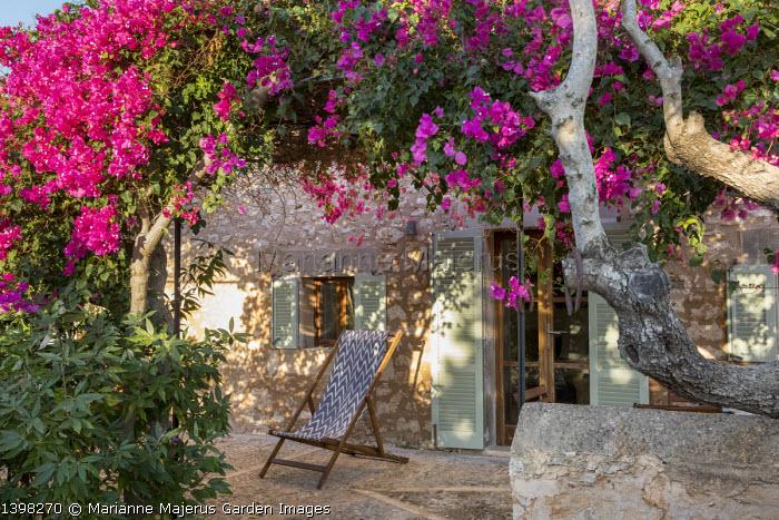 Deckchair under bougainvillea on mediterranean terrace
