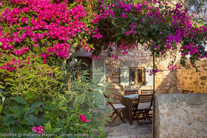 Table and chairs on mediterranean terrace under bougainvillea