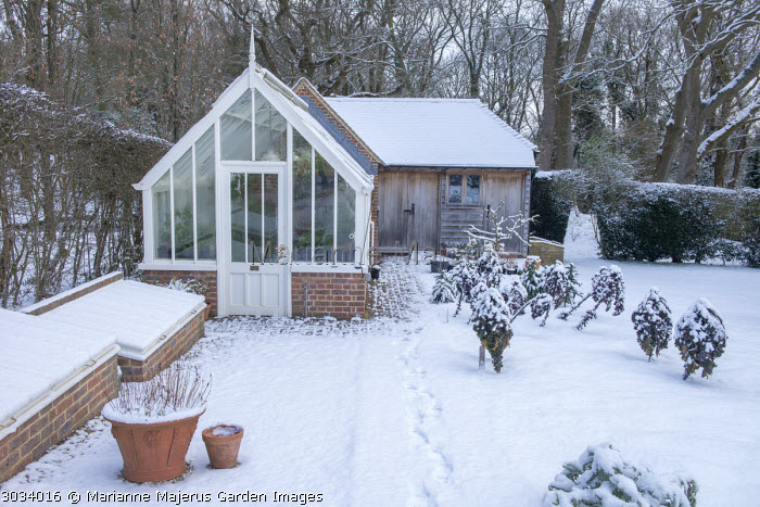 Kitchen garden, greenhouse, coldframes and shed in snow