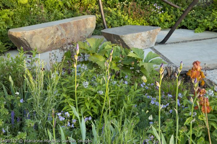 Stone benches, Iris 'Carnival Time', Geranium pratense 'Mrs Kendall Clark', Amsonia illustris, Geum rivale, Rodgersia 'Irish Bronze'