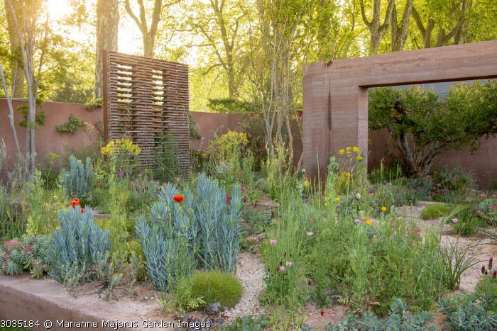 Senecio mandraliscae, Papaver rhoeas, Trifolium incarnatum, Ridolfia segetum, Isatis tinctoria, Lagerstroemia indica