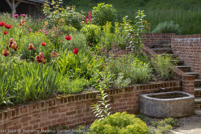 Raised brick border, Papaver orientale (Goliath Group) 'Beauty of Livermere' and 'Harlem', Euphorbia griffithii 'Dixter', Iris 'Quechee', Euphorbia seguieriana subsp. niciciana, stone trough