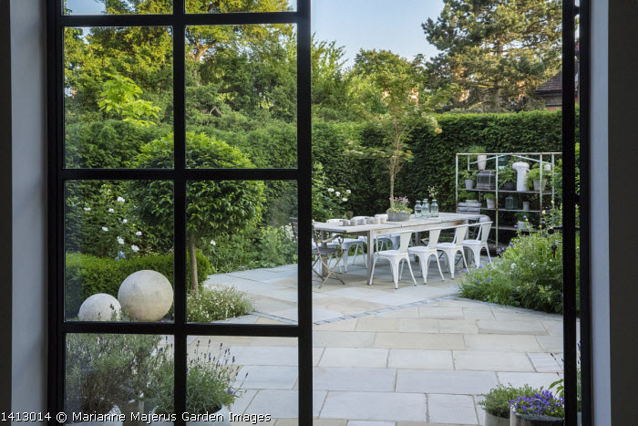Table and chairs on York stone patio, Prunus lusitanica 'Angustifolia' standard lollipop trees, low clipped box hedges, pots on shelves, roses, Erigeron karvinskianus, view from inside, Sorbus cashmiriana