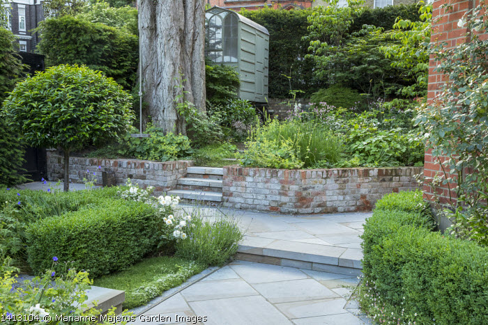 Swing in shady town garden, steps leading to shed, clipped box hedges, Prunus lusitanica 'Angustifolia' standard lollipop tree, lavender, small thyme lawn, Heuchera cylindrica 'Greenfinch', Alchemilla mollis