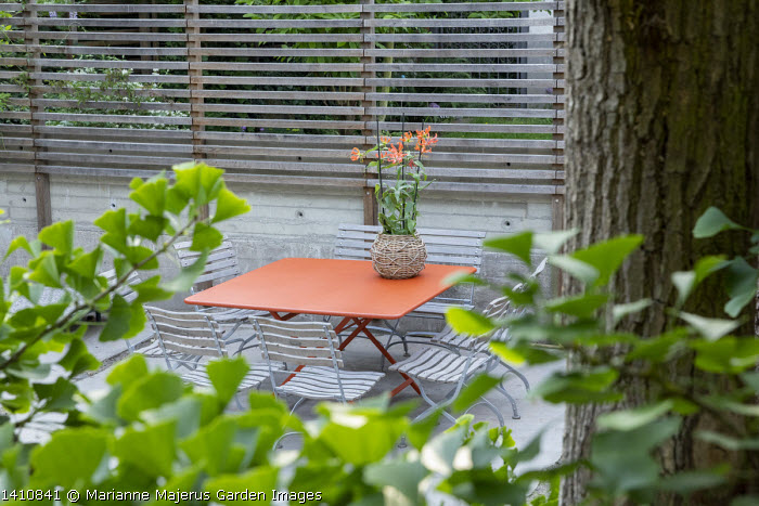 Orange table and chairs on patio, slatted timber fence, gloriosa in pot