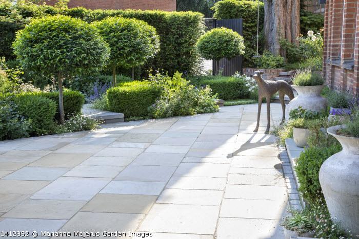 Prunus lusitanica 'Angustifolia' standard lollipop trees, low clipped box hedges, York stone paving, dog statue