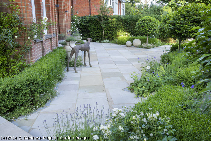 Prunus lusitanica 'Angustifolia' standard lollipop trees, low clipped box hedges, stone paving, Lavandula angustifolia 'Munstead', astrantia, roses, geranium, dog sculpture