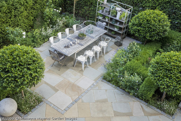 Table and chairs on York stone patio, Prunus lusitanica 'Angustifolia' standard lollipop trees, low clipped box hedges, pots on shelves, roses, astrantia, geranium, Alchemilla mollis, Erigeron karvinskianus