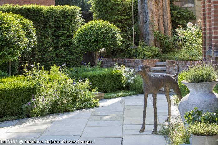 Bronze dog statue, Prunus lusitanica 'Angustifolia' standard lollipop trees, low clipped box hedges, Yorkstone paving, geraniums, roses, Lavandula angustifolia 'Munstead' in large pot