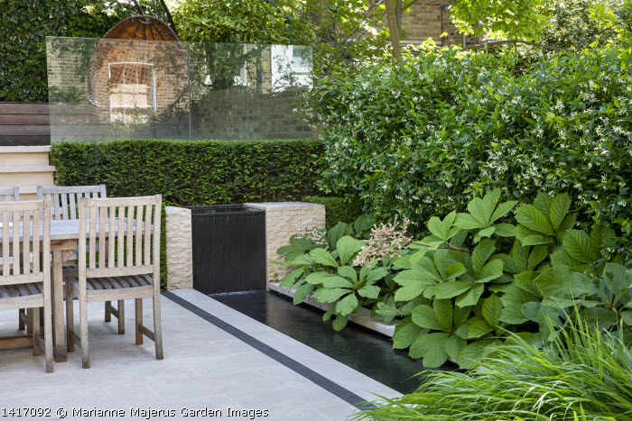 Wooden table and chairs on stone patio, clipped yew hedge, formal rill and waterfall, rodgersia, Trachelospermum jasminoides climbing on wall, glass screen