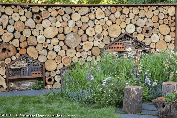 Cut log wall, insect and bug hotels, wildlife habitats