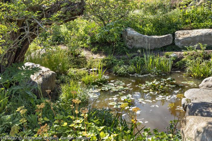 Large rocks around natural wildlife pond