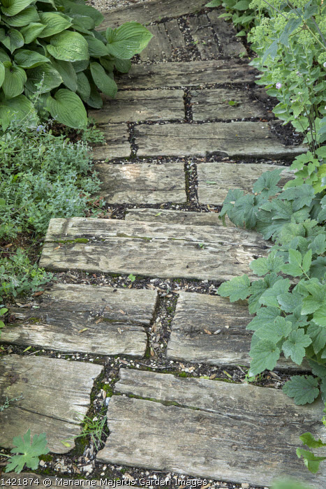Rustic wooden path