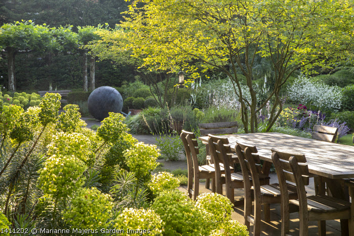 Wooden table and chairs on stone patio under umbrella, multi-stemmed amelanchier, euphorbia
