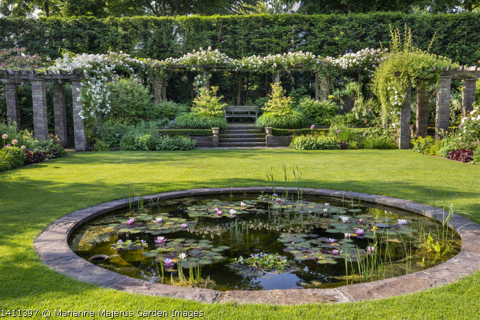 Circular stone-edged water lily pond in lawn, Nymphaea 'Rosennymphe', rose pergola with Rosa 'Francis E. Lester'