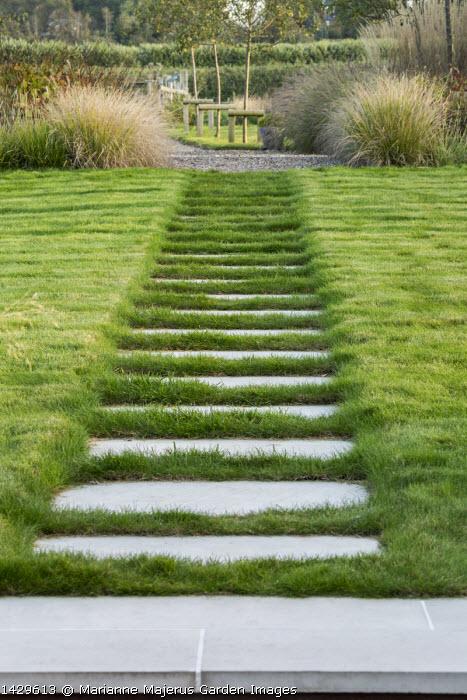 Stepping stone path across lawn, Betula nigra, Pennisetum alopecuroides 'Hameln'