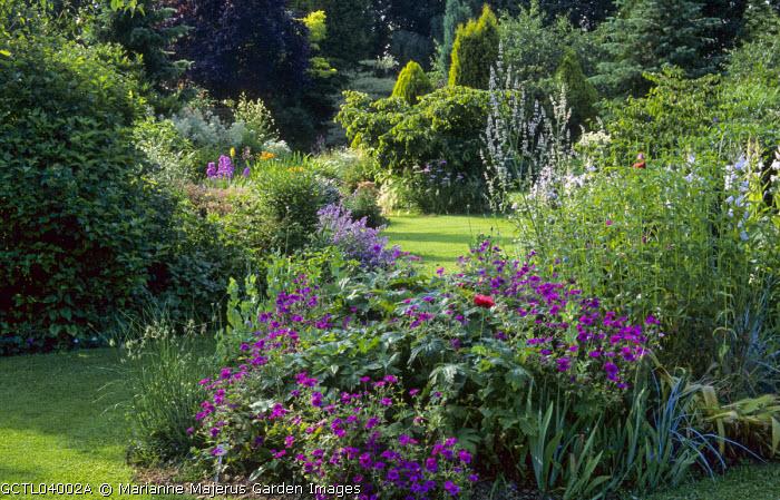 Lawn with curved summer border, Geranium psilostemon, poppies