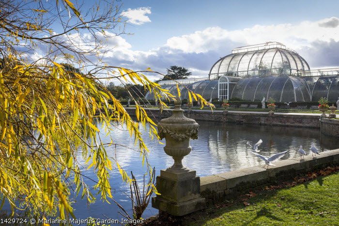 View across lake to Kew Gardens Palm House, stone urn