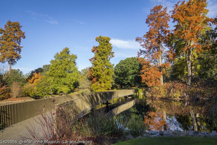 Sackler Crossing, wavy path across lake
