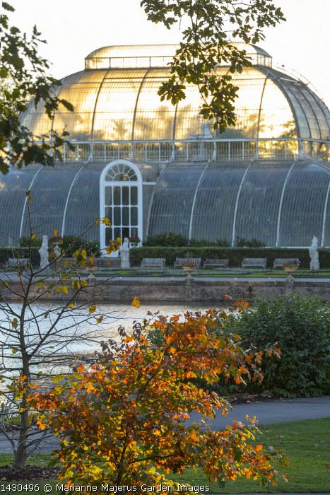 View across lake to Palm House at Kew Gardens