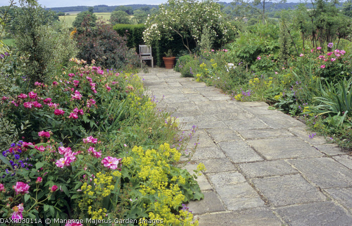 Stone path, borders with roses, Alchemilla mollis, view to chair