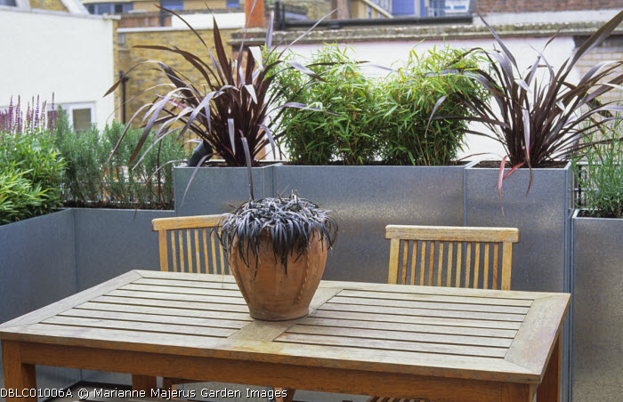 Roof terrace, phormiums, bamboo and grasses in galvanized zinc containers around wooden table and chairs, ophiopogon in container