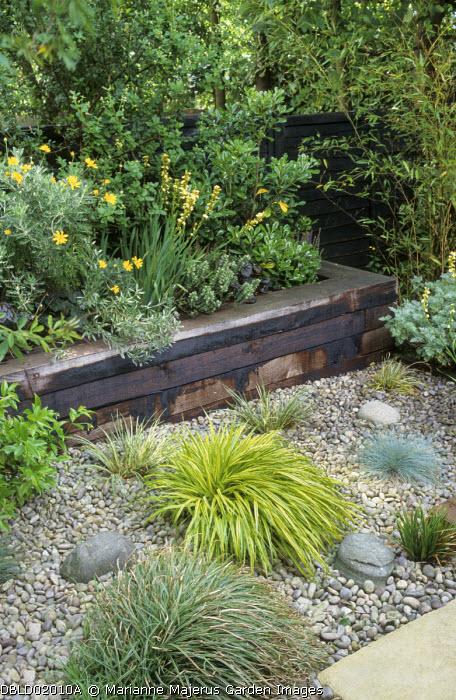 Timber-edged raised bed, gravel garden, sisyrinchium, railway sleepers, Hakonechloa macra 'Aureola', hypericum